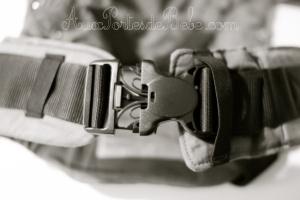 manduca-ceinture